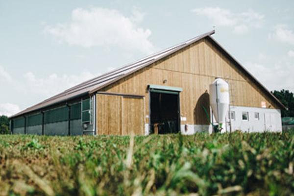 Gradnja hleva in ostalih kmetijskih objektov iz lesenih nosilcev.