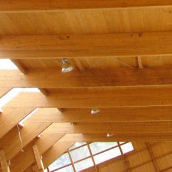 Kmetijski objekti, hlevi, lesene konstrukcije, Haas dom