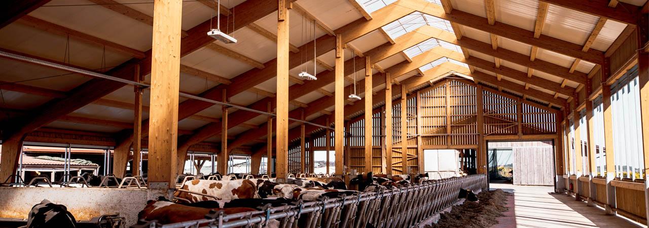kmetijski objekti štale Haas